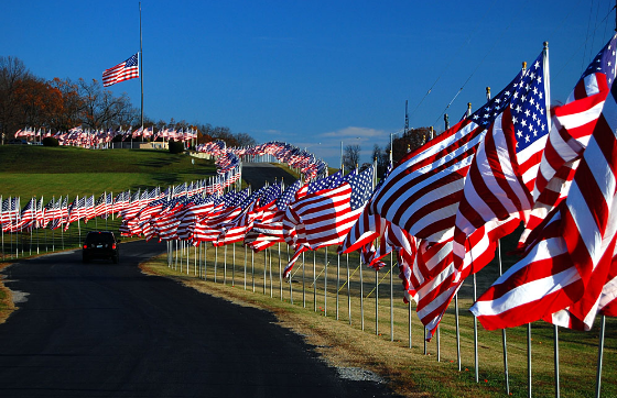 Veterans Day USA Flag Images