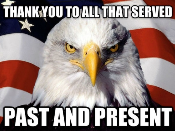 Veterans Day Memes Thank You
