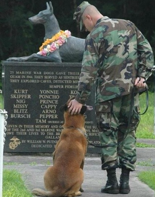 National K9 Veterans Day Is March 13th