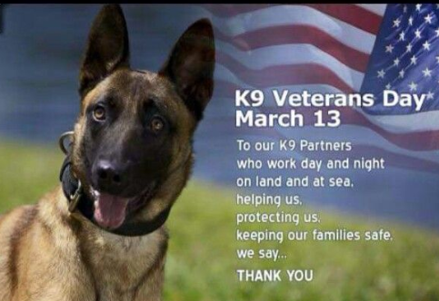 K9 Veterans Day 2020
